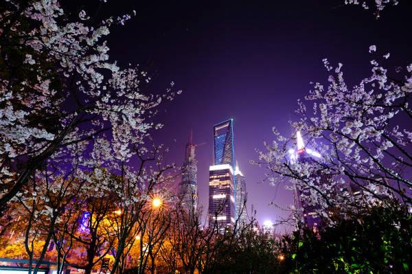 上海环球金融中心观光厅上海环球金融中心观光厅97层