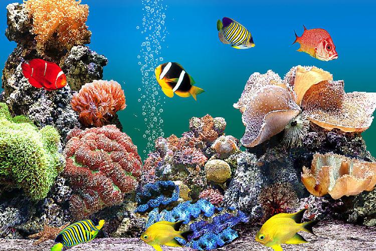 颐和园园门票价格_北京太平洋海底世界门票价格_北京北京太平洋海底世界门票团购 ...