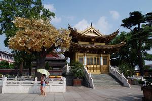 【驴妈妈温泉季】上海坐公交就可以去的温泉