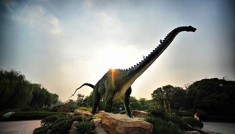 常州 恐龙谷温泉 江苏 常州万豪酒店 常州恐龙园 迪诺水镇2天1晚日自