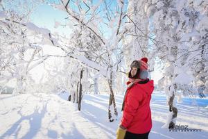 【我要做驴神】江南的孩子驾着北国冰封的梦,千里找北挨一大冻(哈尔滨-雪乡-漠河)