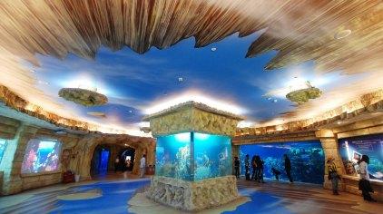 北京海洋馆水母秘境