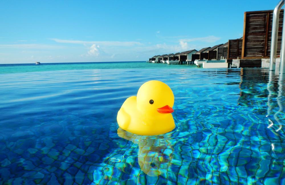 sanshiwushuinanrexiangerzimo_紫陌zimo发布的【旅行不要停】带着小黄鸭去马代图片