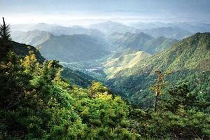 天目山的两日游————世界那么大,我从上海来到了天目山!