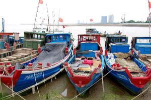 祺行天下,自驾游上海最后的渔村:金山嘴渔村