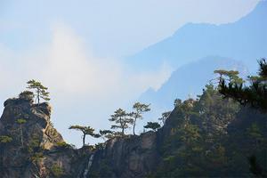 【我是达人】最美的大明山攻略,深秋临安行,太湖源~大明山云海