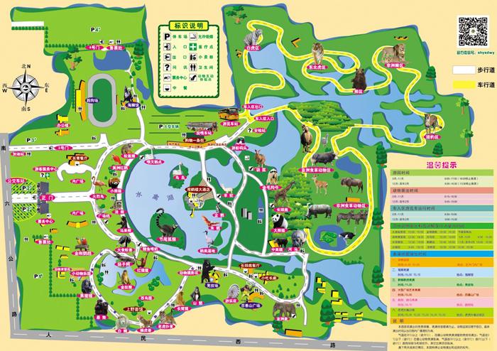 景区地图 @上海野生动物园官网