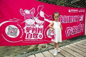 """一写就""""惠""""812著名主持领队余姚游(上海站)"""