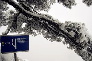 【我是达人】雪景黄山,飘渺孤傲