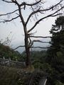 武当山风景区