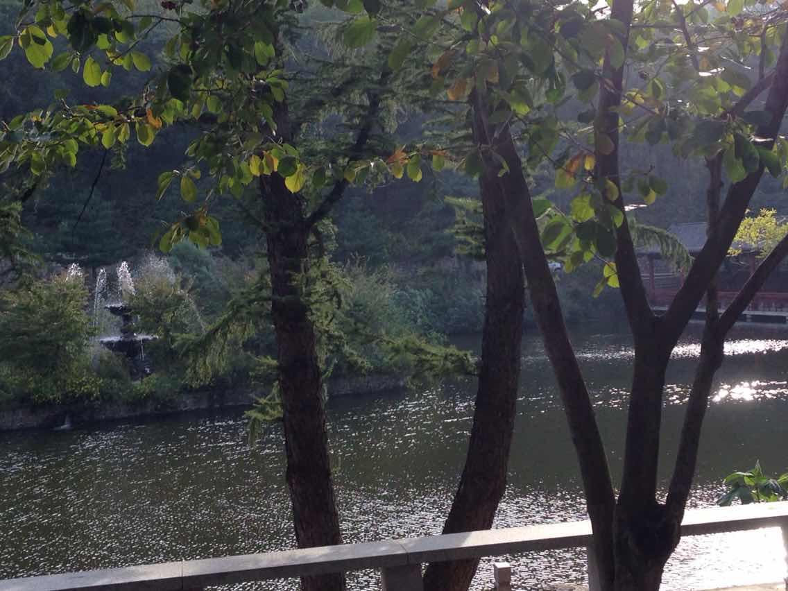 鲁山国家森林公园攻略_鲁山国家森林公园门票价格... _途牛移动站