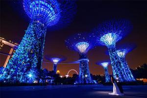 【我是达人】繁花似锦烟火氤氲的新加坡