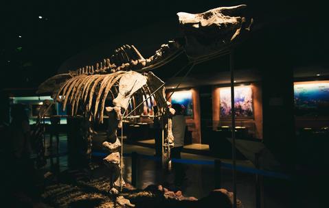 土楼自然博物馆