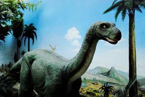 【享泡温泉】就在你身边的侏罗纪公园