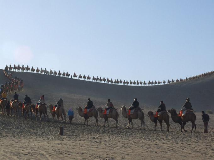大漠乘駝 @鳴沙山·月牙泉官網