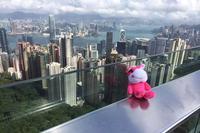 【香港九龙酒店】香港3晚4日自由行(香港海洋公园门票特惠购)(港龙 国泰航空往返)★★★★