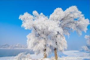 【我是达人】江山北望-东北经典线&雪乡轻户外穿越