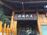 张家界天门山+土家风情园