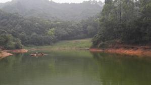 春节回深必去的'最猴的农家乐'—深圳九龙生态农业园