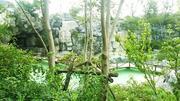 吴淞口炮台湾湿地森林公园