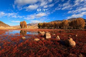 【我是达人】高海拔之旅,寻找最美秋天——稻城亚丁、香格里拉、成都13日行摄记