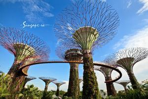 【我是达人】新加坡——雨季找寻曼妙晴天