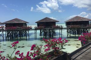 【春季大赏】马来西亚,亲子天堂(卡帕莱+亚庇+新山乐高乐园+吉隆坡)