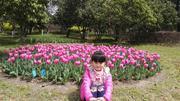 上海鲜花港