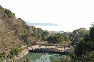 【春季大赏】舟山诸岛游记