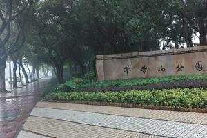 【春季大赏】雨中赏景(深圳笔架山)