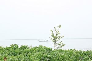 【全民摄影季】周末烧烤记-阳澄湖畔美人腿自驾游