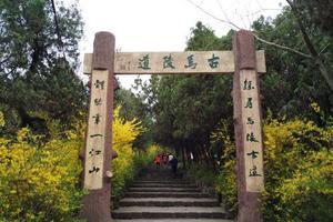 新沂市马陵山风景名胜区游记