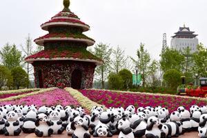 【全民摄影季】一面欣赏花世界一面品尝锅盖面——扬镇2日半游