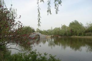江苏茱萸湾