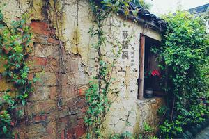 【我是达人】清明雨,古村游#带你看世界#
