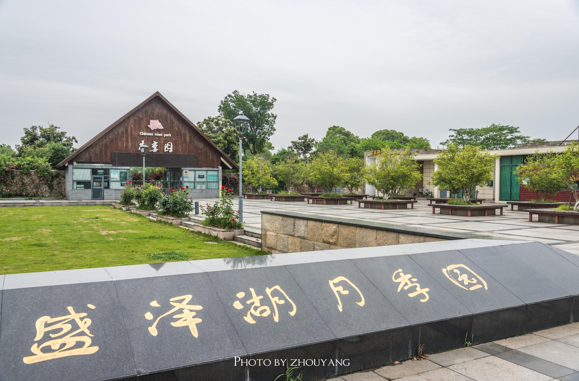 苏州盛泽湖月季园
