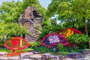 【全民摄影季】满园春色布芳香——梅园游记