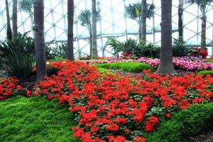 """【一写就""""惠""""】在这个""""亚洲第一园""""里还有许多风格各异的小园子"""