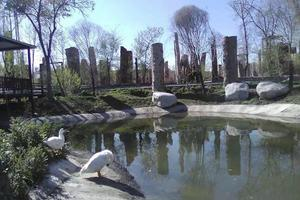 新疆古生态园 乌鲁木齐市内一日游