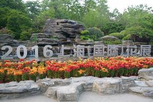 """【一写就""""惠""""】不同季节的上海植物园"""