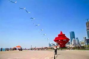 北京人在青岛