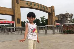 """【一写就""""惠""""】北京野生动物园一日游,亲子活动首选!"""