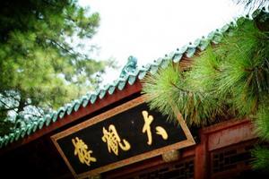 游上海大观园