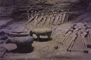 """【一写就""""惠""""】西安(西线)法门寺、乾陵、太子墓、汉阳陵一日游"""