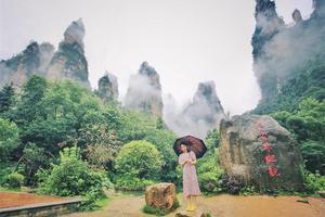 【缤纷迪士尼】森林度假,纯净呼吸-张家界