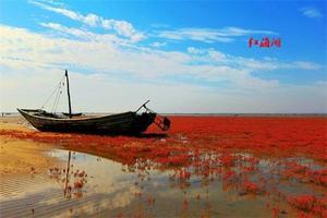 那一片红色的滩涂,那一处雅致的私密