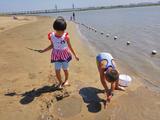 金河湾湿地公园