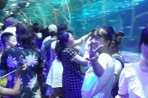 圣亚海洋世界~海洋动物的天堂