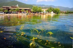 高原上的一颗明珠——泸沽湖
