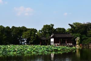 【我是达人】#Dickies骑行侠#杭州宋城西湖娱乐休闲两不误